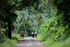 Koro Island villagers on the walk home from their farms